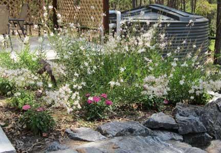 Garden-in-bloom